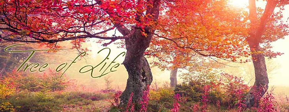 Lebensbaum Anhänger und Schmuck