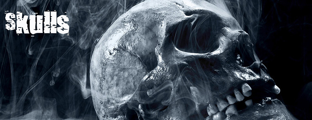 Totenkopf Schmuck Skulls